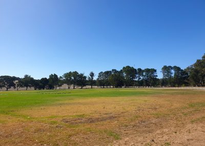 Talunga Park Oval's state of the artirrigation